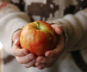 See how small these apples are?  So petite.