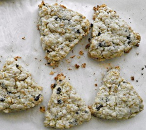 Scottish Oatmeal Scones